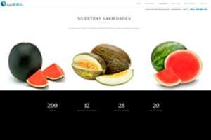 Diseñador web WordPress de Agroborja S.L.