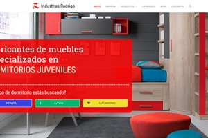 Diseñador web WordPress de la empresa Industrias Rodrigo.