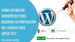 Optimizar Wordpress para Google Page speed test